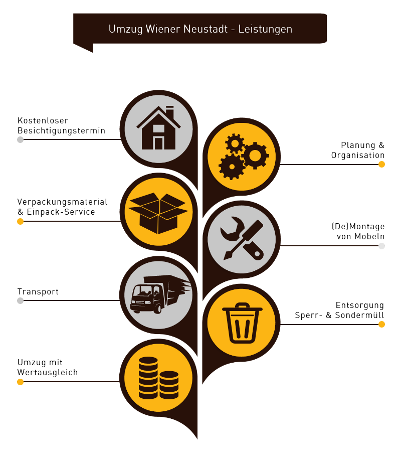 Umzug Wr. Neustadt Infografik