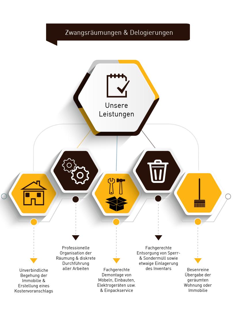 Delogierung Infografik