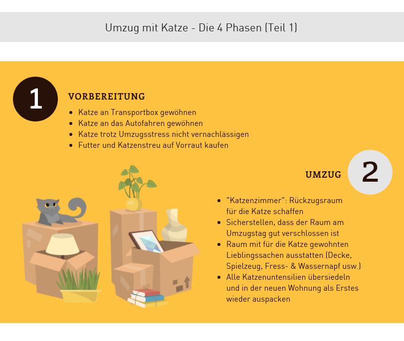 Umzug mit Katze Infografik Teil 1
